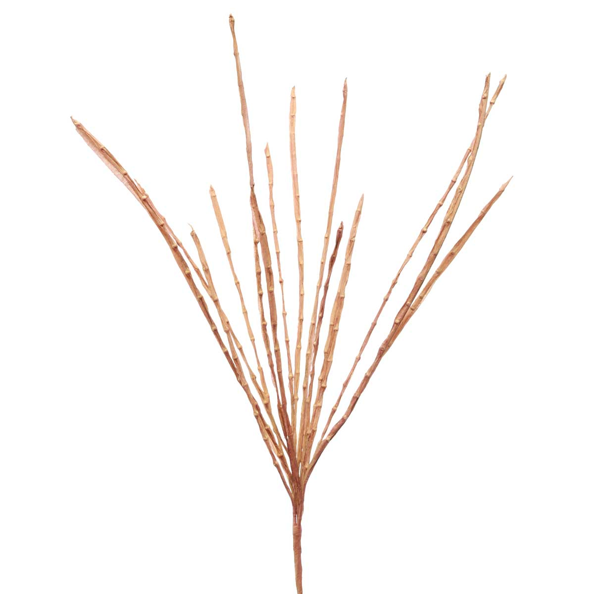 "WILD BEAN GRASS SPRAY 31"" BROWN"